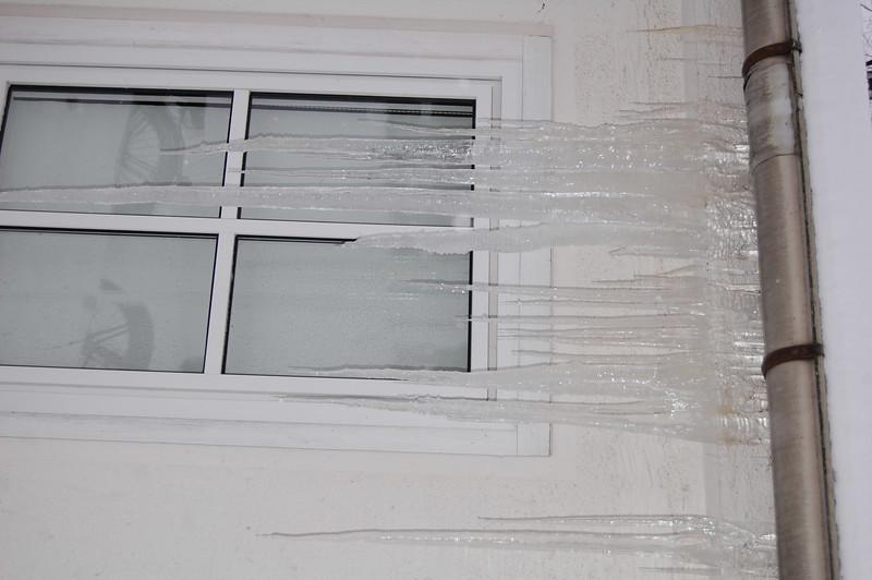 2010_0109Bild0032