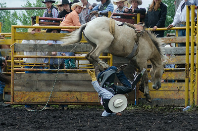 Broncs Sunday 2014