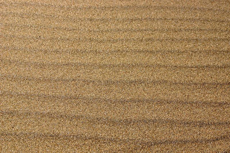 Sand lines at Limantour Beach. ref: 38337d23-ab57-4b56-9acd-86cab929149f