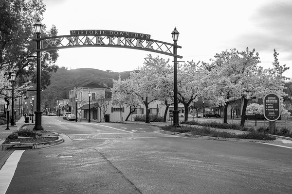 Stokley B&W Martinez Historic Downtown