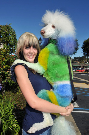 Poodle Day 2011-Winners
