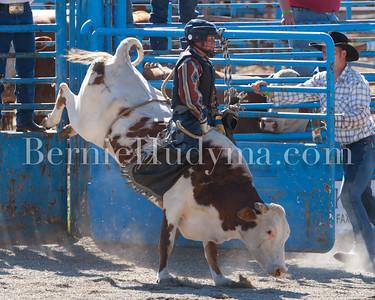 Junior Steer Riding