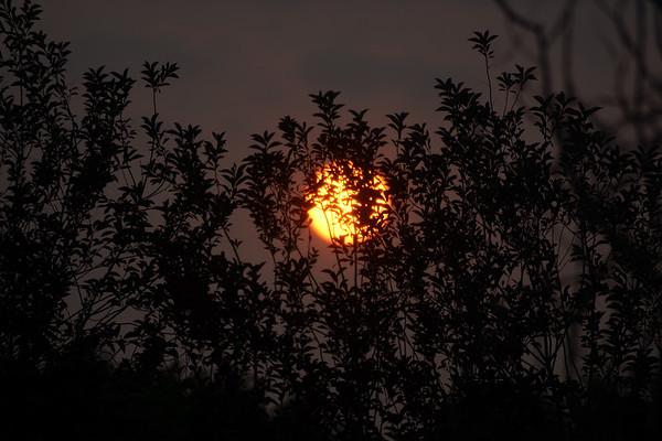 Orange Sun & Moon Sept 2017