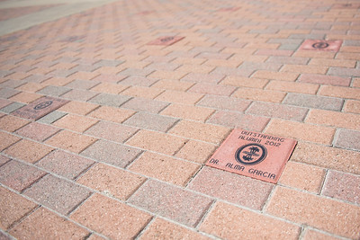 080117 CI-Courtyard Bricks