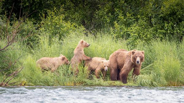 2018 Alagnak River, Alaska
