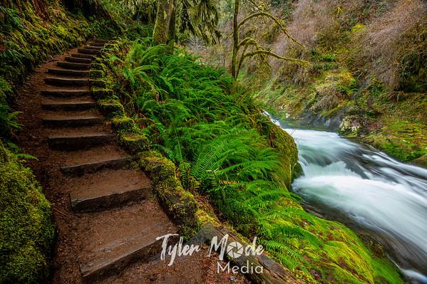 2.17.20 Sweet and Beaver Creek Trails