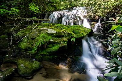 Metcalf Creek Part 2