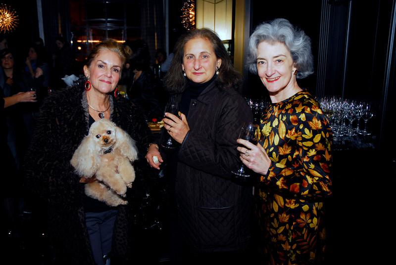 Kyle Samperton,November 4,2009,St.Regis Hotel,Karen Feld,Beth Mendelson,Marsha Dubrow