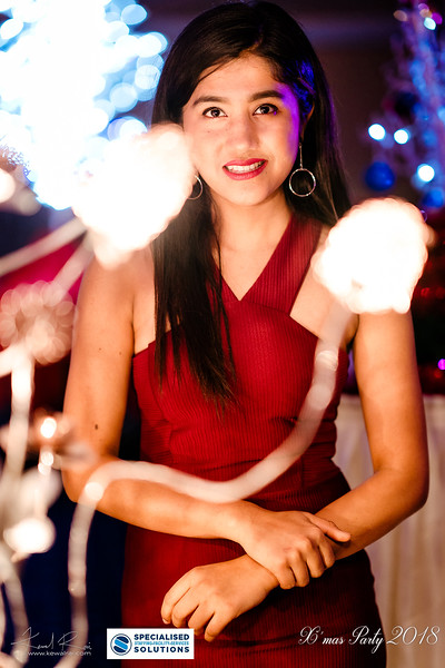 Specialised Solutions Xmas Party 2018 - Web (101 of 315)_final.jpg
