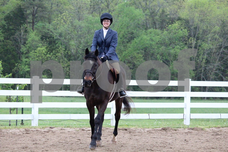 Pleasure Horse- JR's