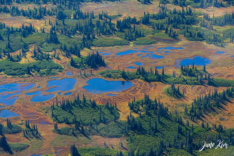 Rust's_Beluga Lake__6100733-2-Juno Kim.jpg