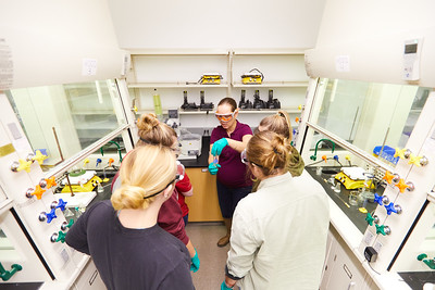2019 UWL Valeria Stepanova Chemistry Biochemistry Lab