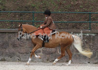 Open Equitation (Saturday)