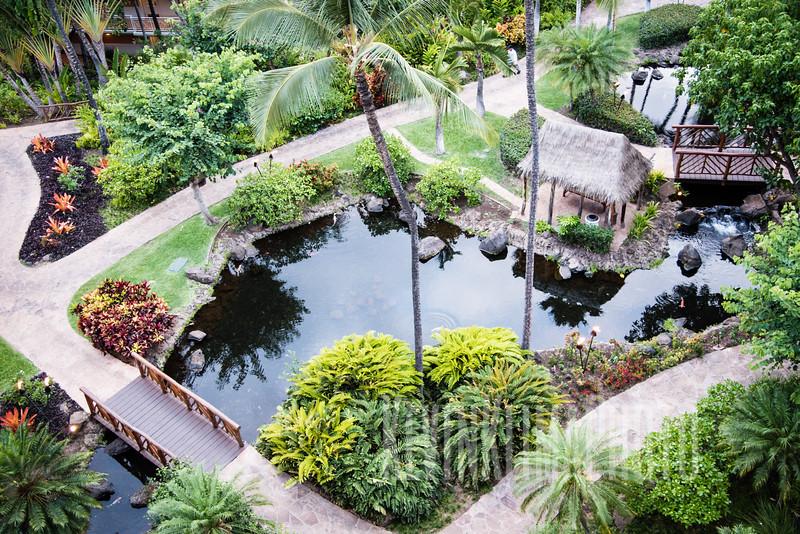 Maui2016-075.jpg