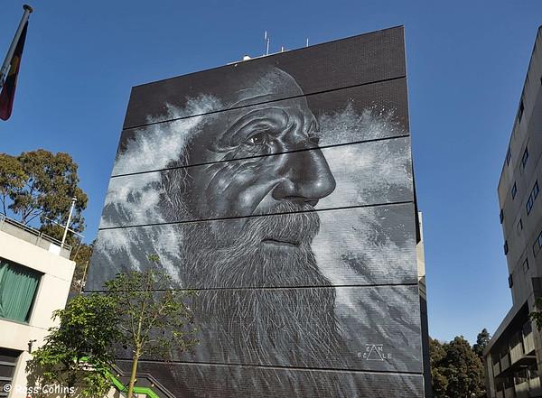 Geelong Street Art 2019