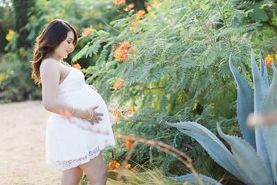 Barbara Pregnancy
