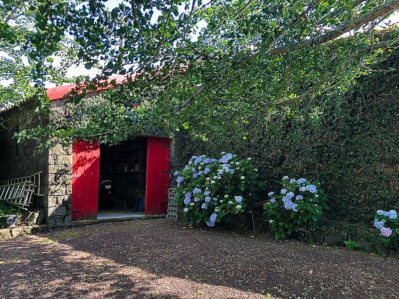 Antonio's shed