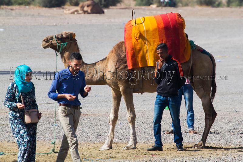 Morocco 1b 0086.jpg