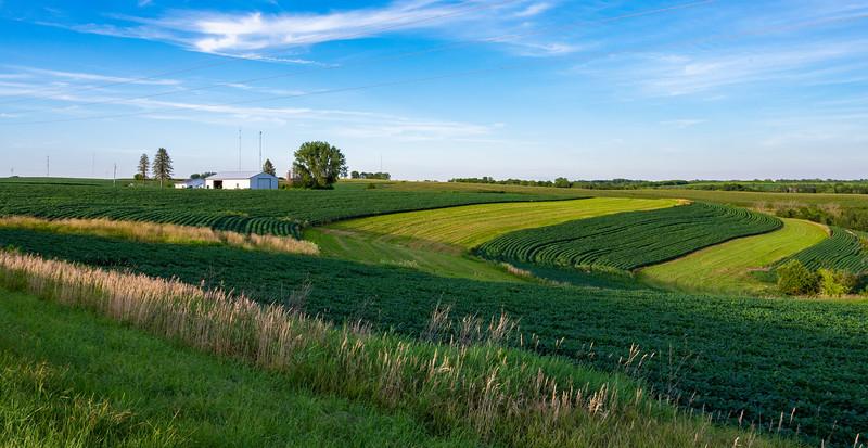 07-30-2020-farm-3.jpg