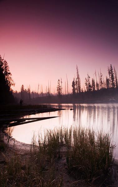 "Revere  ""Smoke""   Grand Teton National Park, String Lake, Sep 2009"