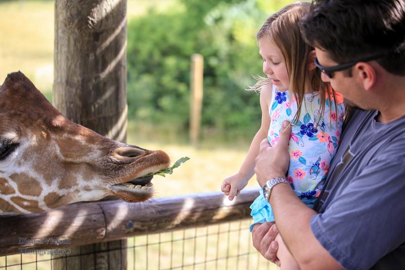 2016-07-17 Fort Wayne Zoo 258LR.jpg