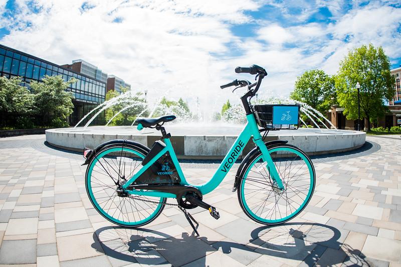 DSC_6675 bike May 06, 2019.jpg