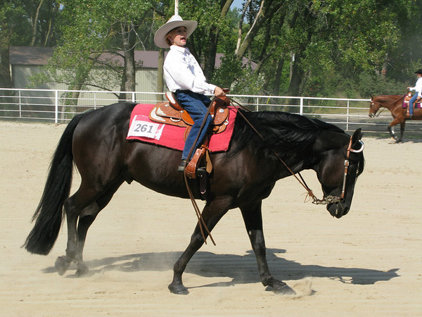 Western Horsemanship 10-12
