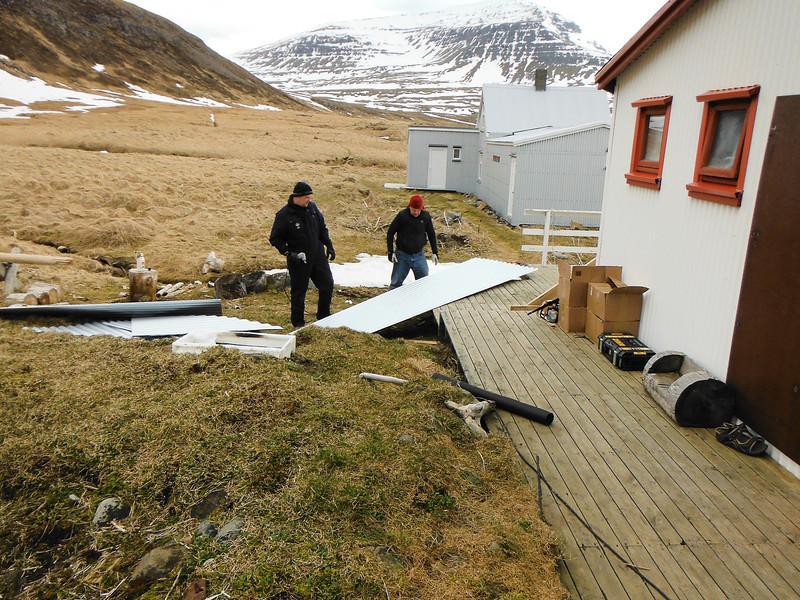 Þórmar og Frímann naga