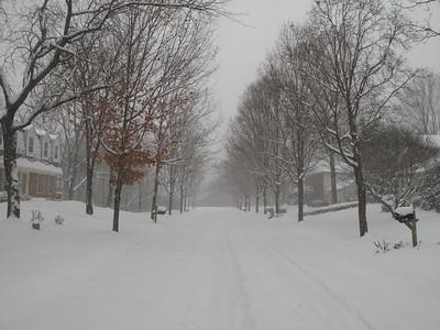 Snow in Rockville 12 19 2009