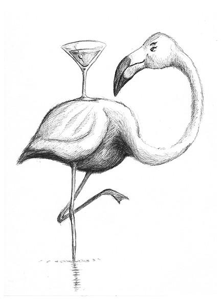 Drinking Flamingo