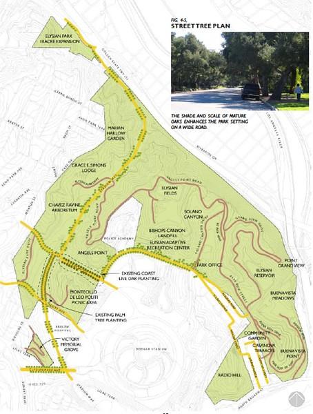 2006, Street Tree Plan