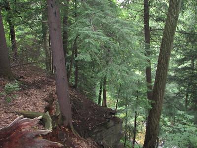 2006.06.28 - Cuyahoga Valley National Park
