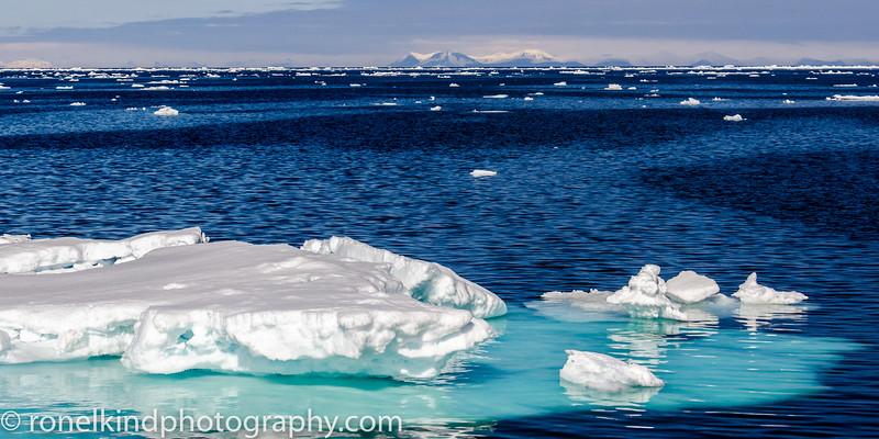 The Magistic Arctic
