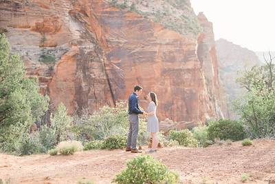 Michael & Jordan Proposal in Zion