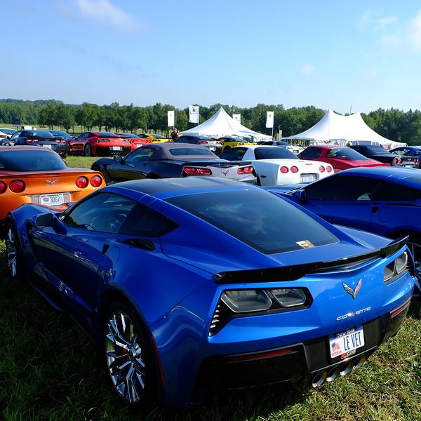 Corvette rear 03.jpg