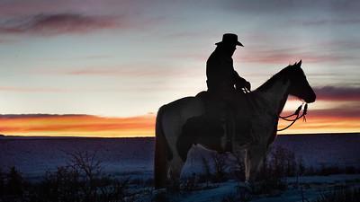 Westcliffe Horses 2019