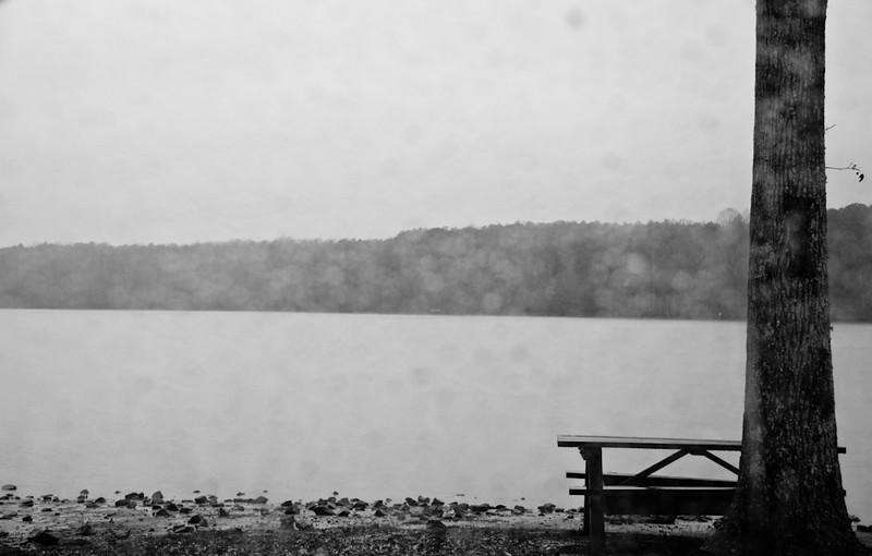 Rainy_Day_at_the_Lake-547.jpg