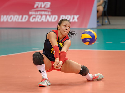 2015 FIVB Volleyball World Grand Prix
