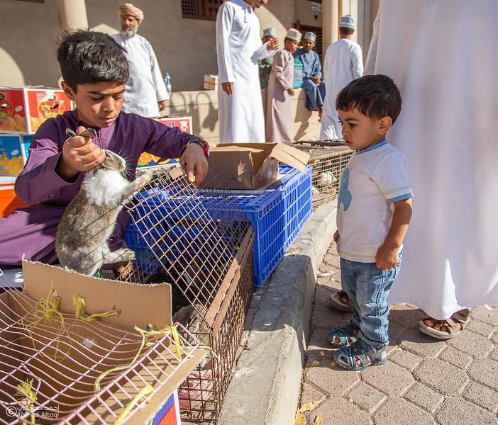 IMGL0889-Saroor-Samail- Oman.jpg