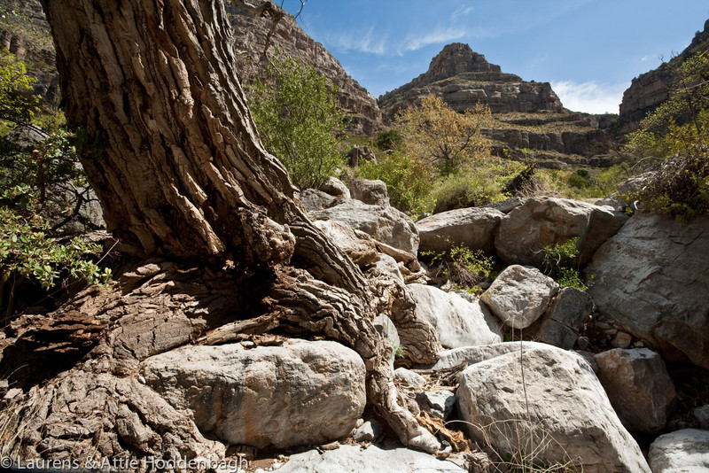 Dog Canyon at Oliver Lee Memorial State Park, New Mexico