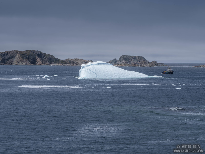 Iceberg 68a      Photography by Wayne Heim