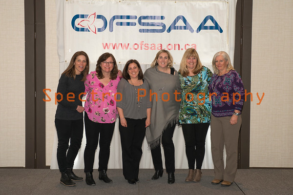 OFSAA Alpine Awards 2017