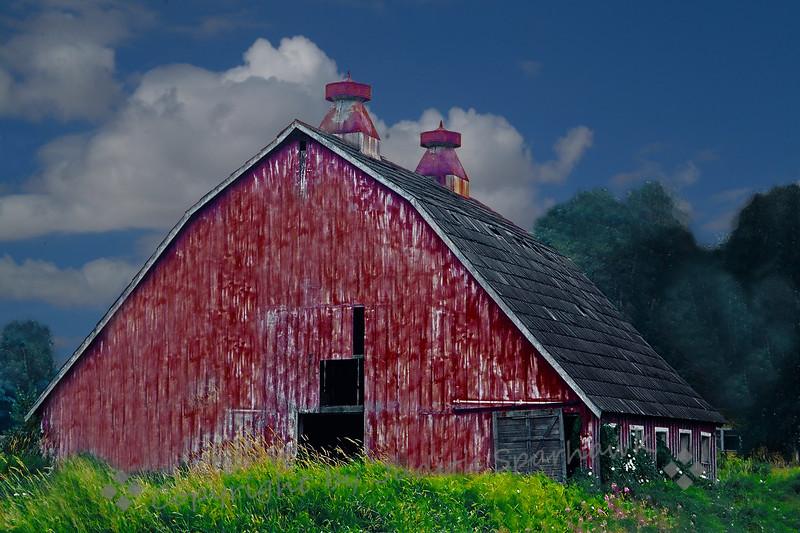 The Big Red Barn - Judith Sparhawk