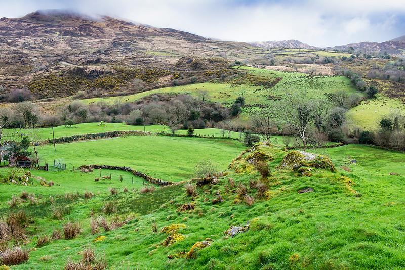 Sheep Pen; Glencar, Ireland 2017