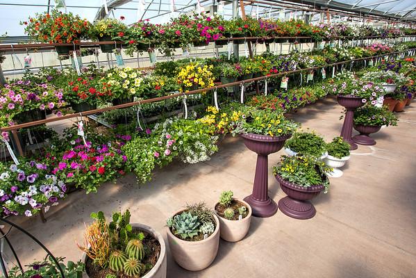 Basin Nursery & Garden Center