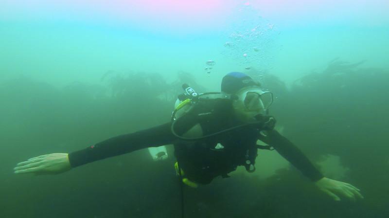Devon-Underwater-14.jpg