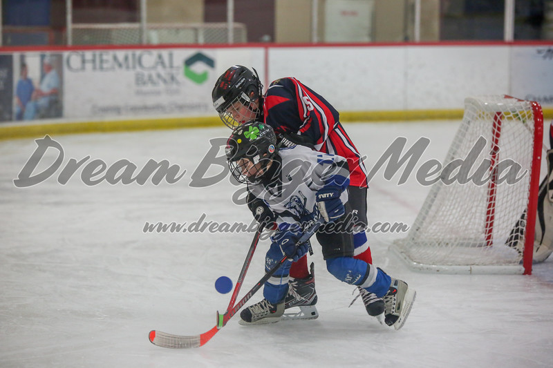 Blizzard Hockey 111719 7721.jpg