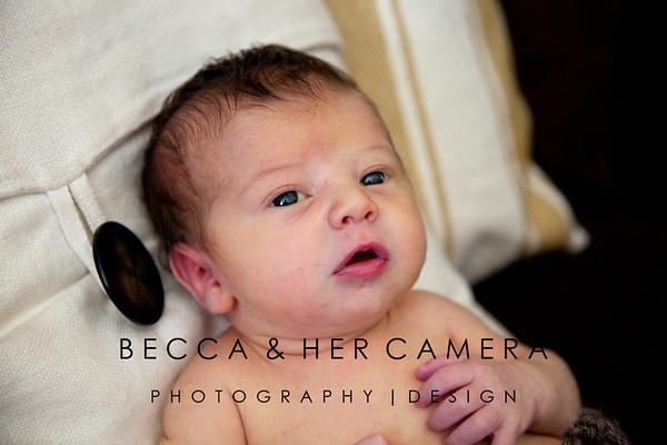 Destry Shelton   Newborn