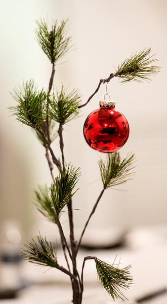 Salvation Army CHEER_December 2013-8151.jpg