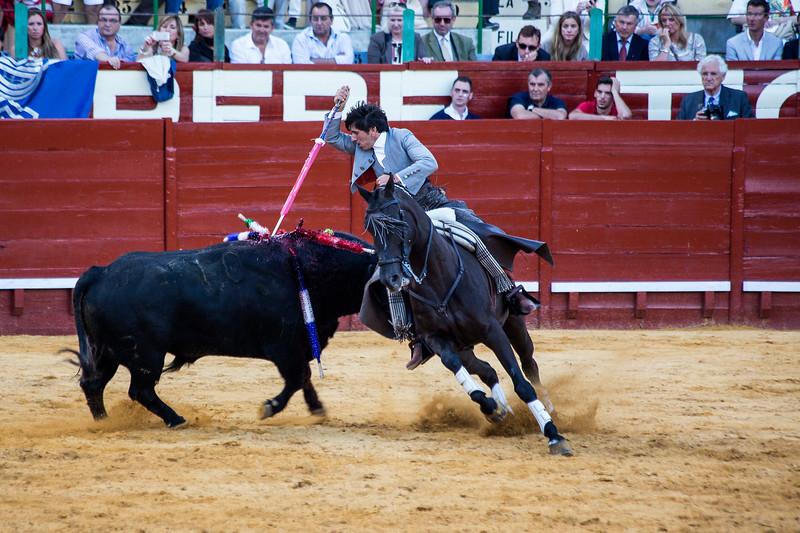 Bullfighting H37.jpg